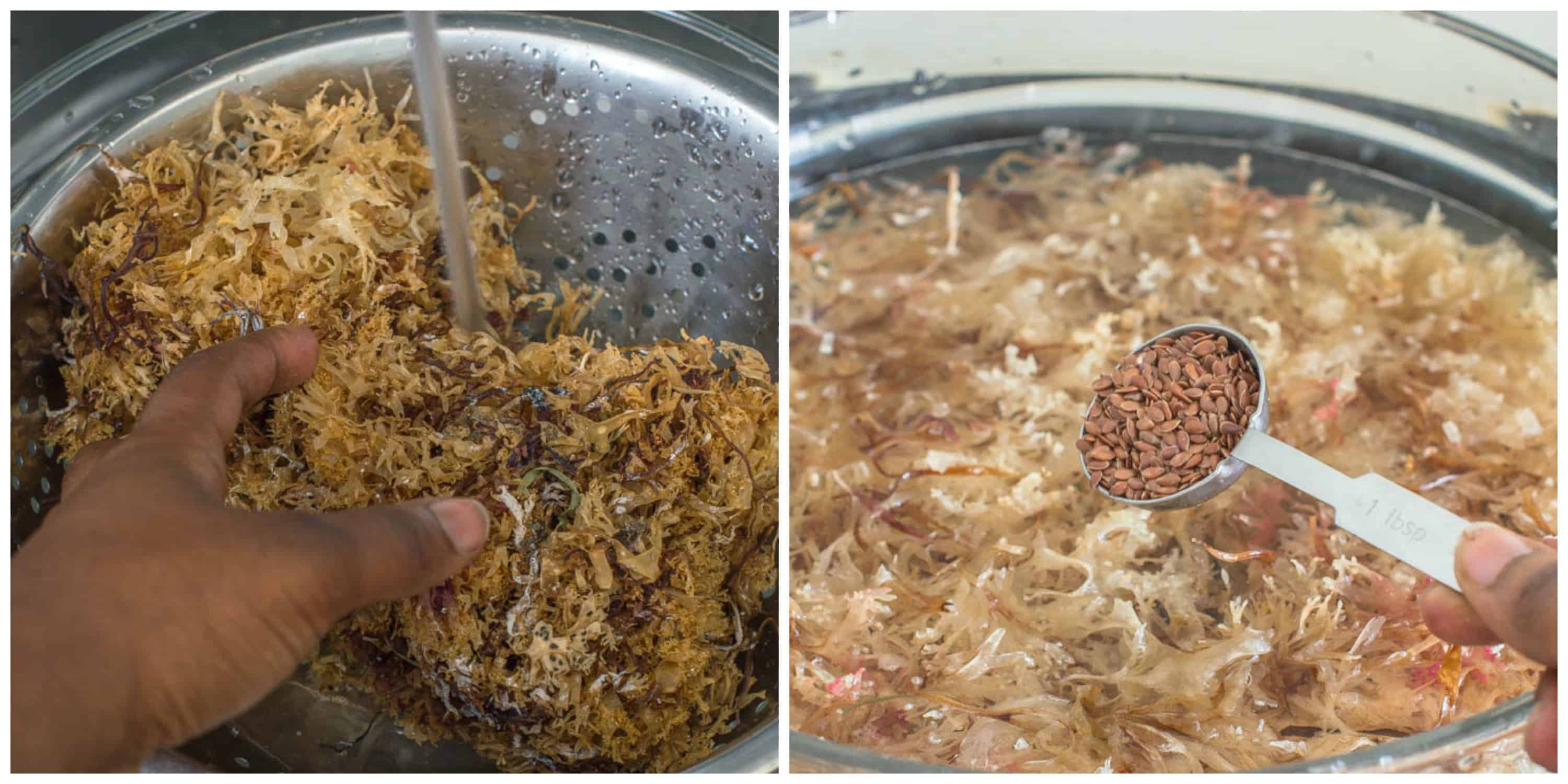 Sea moss drink (Irish moss drink) - That Girl Cooks Healthy