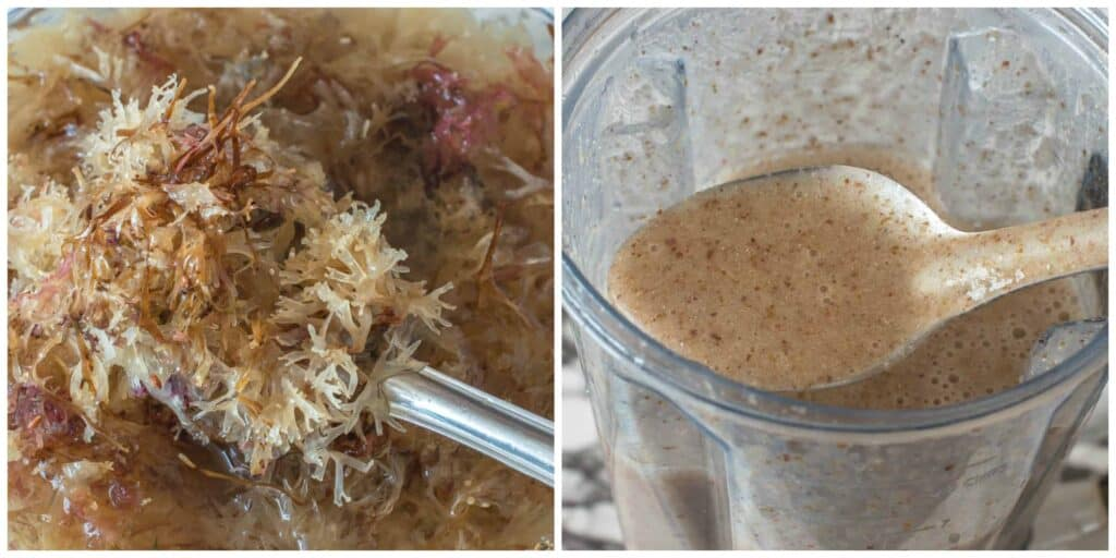 sea moss steps 3 4 1024x512 - Sea moss drink (Irish moss drink)