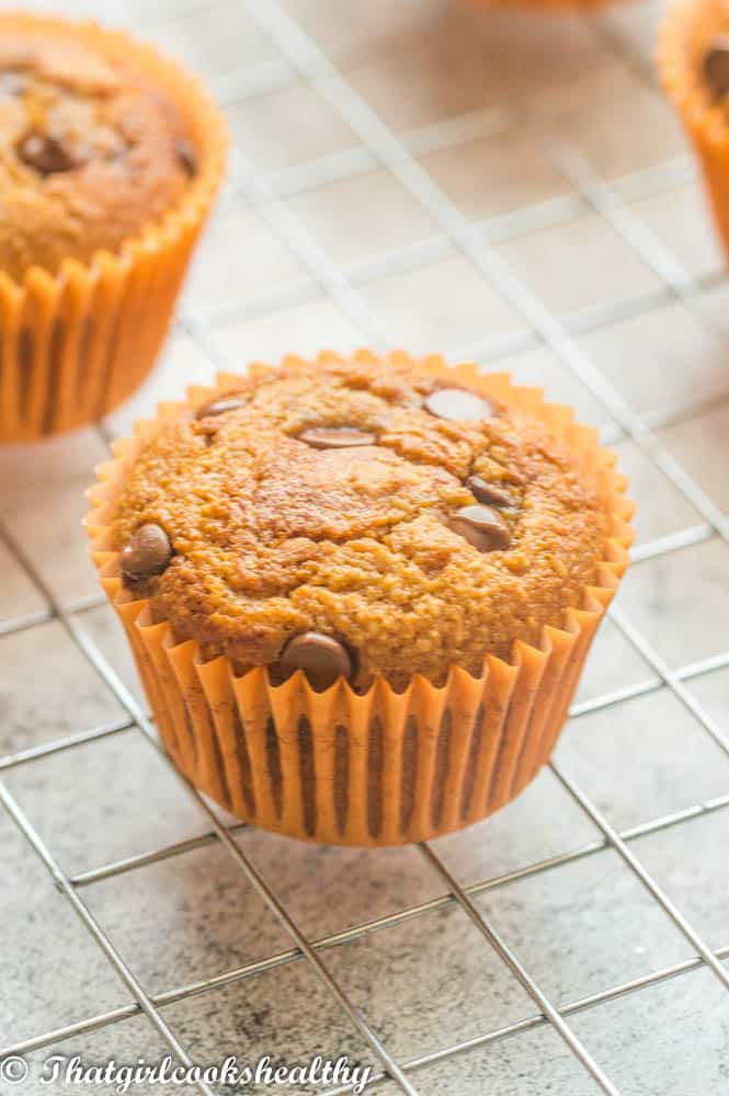 A single muffin