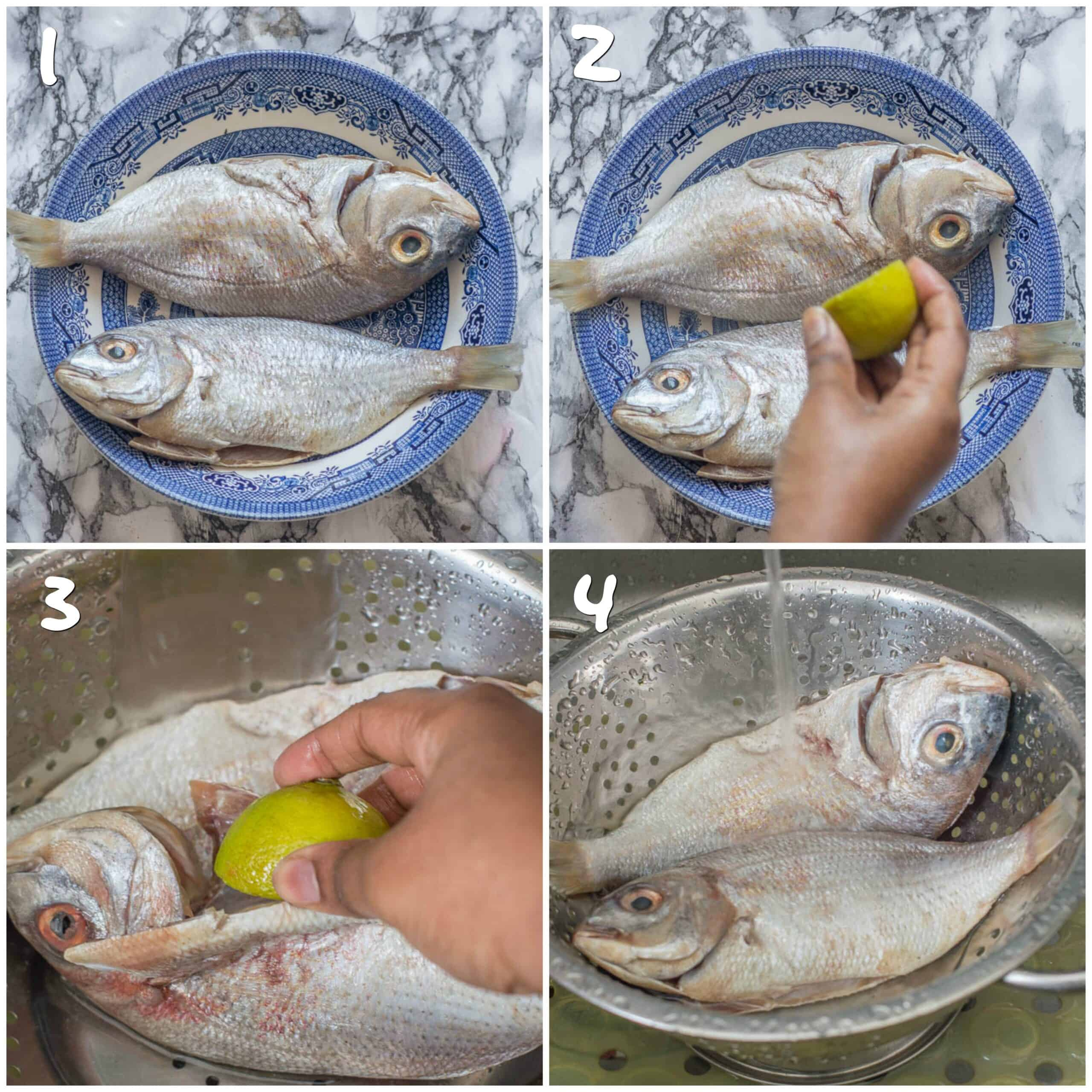 steps 1-4 cleaning the fish