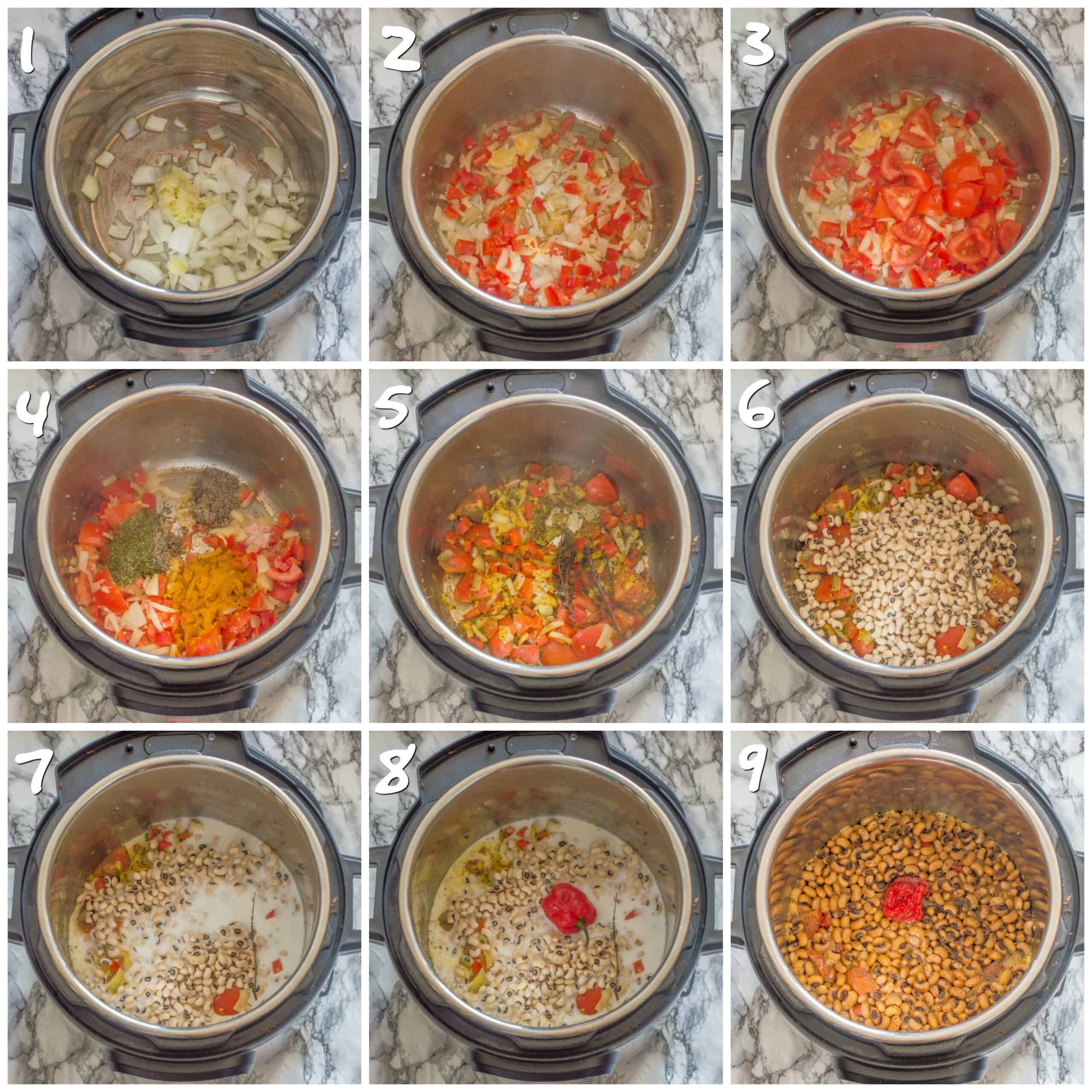 steps 1-9 making the curry in the instant pot